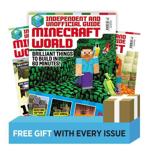 Minecraft World Print Subscription