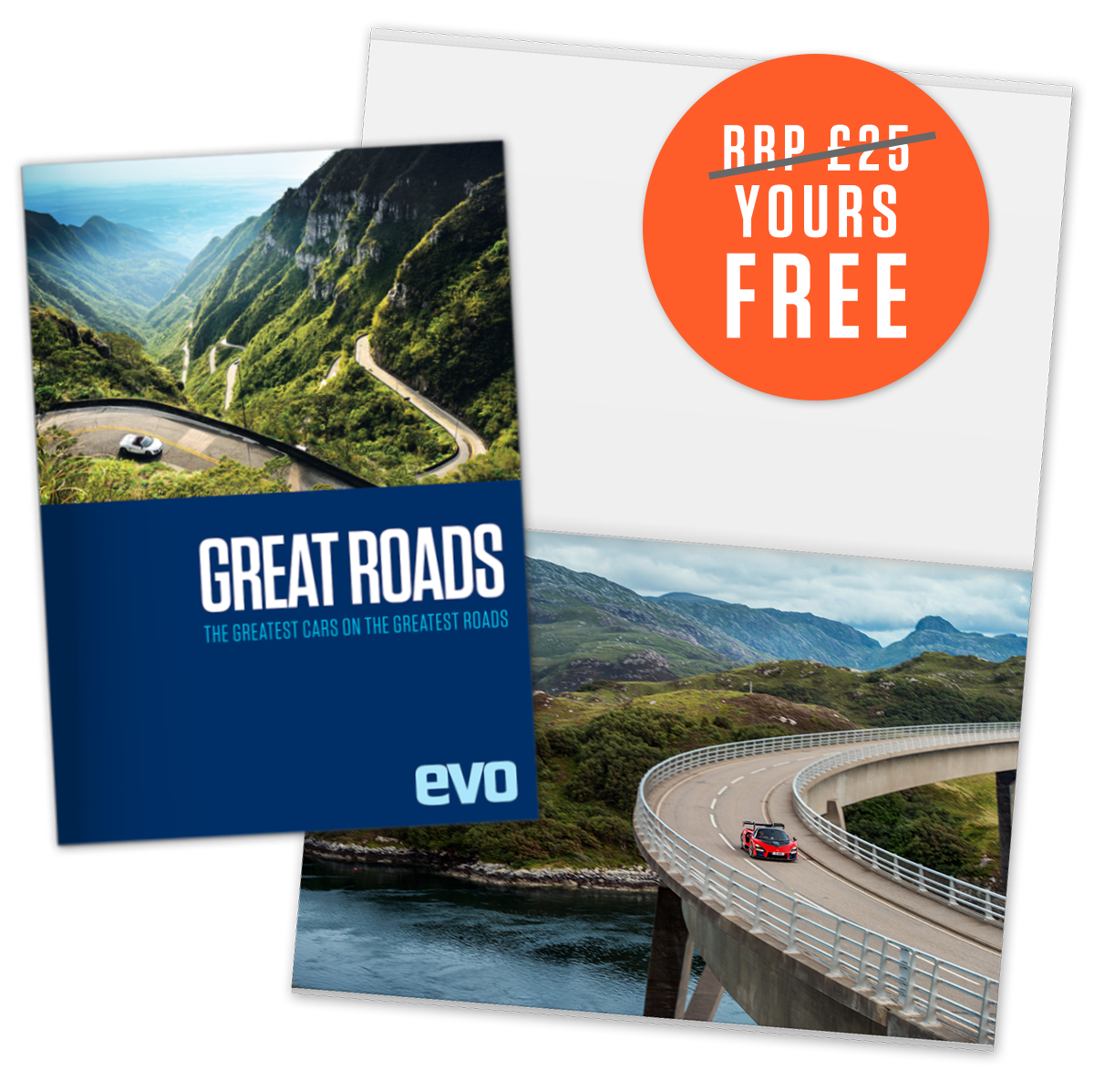 Free poster book