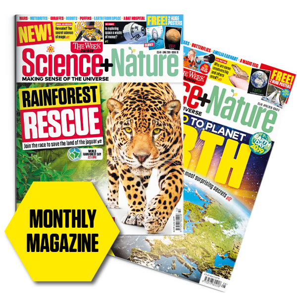 Science and Nature cover