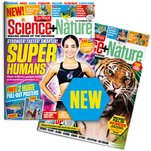 Science+Nature cover