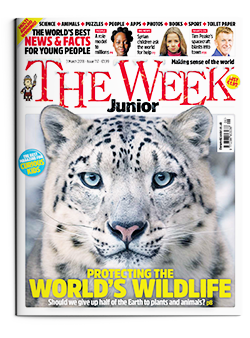 The Week Junior cover