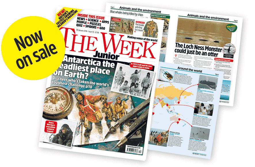 The Week Junior Now On Sale
