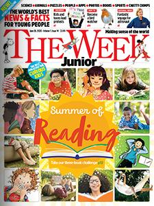 Summer of Reading Cover