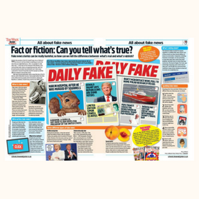 All about fake news image