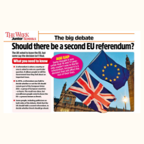 Should there be a second EU referendum
