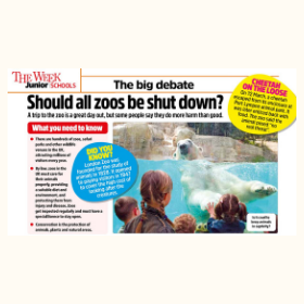 Should all zoos be shut down